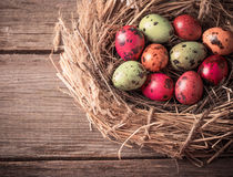 Easter egg in nest on rustic wooden background Stock Photo