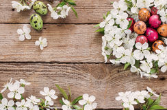 Easter egg nest from white flowers Royalty Free Stock Photo