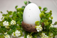 Easter egg in a nest Stock Photos