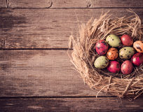 Easter egg nest on wooden background Stock Image