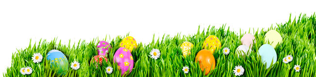 Easter Egg nests Royalty Free Stock Photo