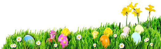 Easter Egg nests Stock Photo
