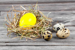 Easter Egg in nests and quail eggs Royalty Free Stock Image