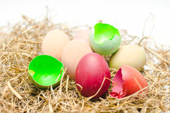 Easter egg in next. Eggs of many colors Royalty Free Stock Images