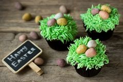 Free Easter Egg On Grass Cupcakes Royalty Free Stock Photography - 110028647