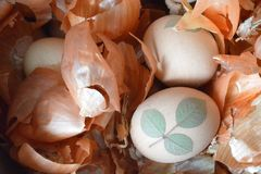 Easter egg and onion peels. Top view of Easter egg and onion peels Stock Photography