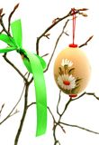 easter egg with ornament on tree branch isolate Stock Image
