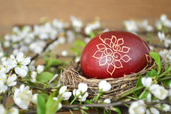 Easter egg painted with wax and spring flowers Royalty Free Stock Images
