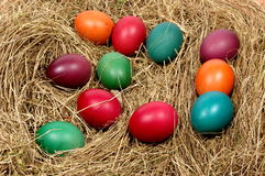 Easter egg. Stock Photography