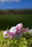 Easter egg with pink bow in moss Royalty Free Stock Photo