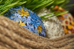 Easter egg placed between frech green wheat germs royalty free stock photography