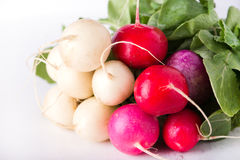 Easter egg radishes Stock Photos