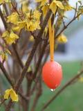 Easter egg rain Stock Images
