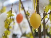 Easter egg rain Royalty Free Stock Photos