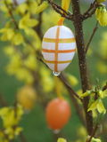 Easter egg rain Royalty Free Stock Image