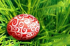 Easter egg red in the grass Royalty Free Stock Photography