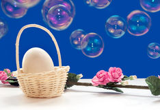 Easter egg with rose twig Royalty Free Stock Image