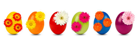 Easter egg row Stock Images