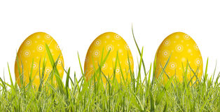 Easter egg in grass. Easter egg's in grass isolated on white background stock photography
