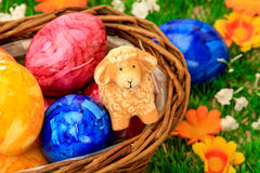 Easter egg and Sheeps. Some colored nice Easter eggs Stock Photo