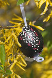Easter egg. The Slovak traditional easter egg in detail Royalty Free Stock Images