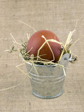 Easter egg in small bucket Royalty Free Stock Photography