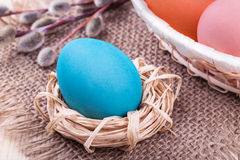 Easter egg in small nest with Easter basket and willow Royalty Free Stock Images