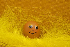 Easter egg smile at camera Stock Photo