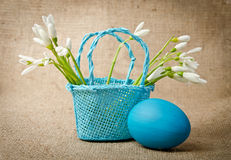 Easter egg and snowdrops Stock Photos