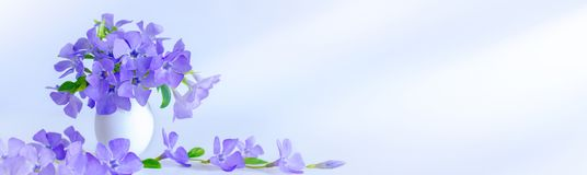 Easter egg and sprig blue flowers on blue background. Easter decoration royalty free stock image
