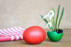Easter egg and spring flowers in eggshell Royalty Free Stock Images