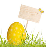Easter egg with blank board. Easter egg in spring grass with blank board on white background royalty free stock photos