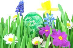 Easter egg on a spring meadow Stock Images