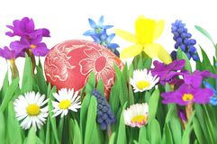 Easter egg on a spring meadow Royalty Free Stock Images