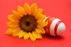 Easter egg and sunflower Royalty Free Stock Photo