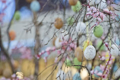 Easter egg tree Stock Images