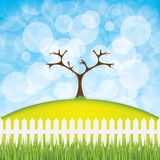 Easter egg tree Stock Photography