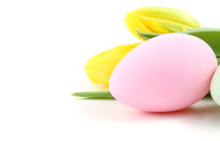 Easter egg with tulip flowers Stock Images