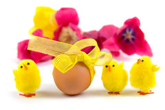 Easter egg and tulips Stock Photography