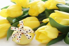 Easter egg and tulips Stock Image