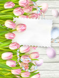 Easter egg, tulips and empty vintage card. EPS 10 Royalty Free Stock Photos