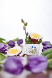 Easter egg with tulips and willow twig. Stock Image
