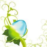 Easter Egg Vine Stock Photos