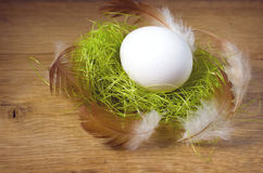 Easter egg white is in the nest Royalty Free Stock Photos