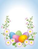Easter Egg With Daisy Stock Photos