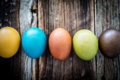 Easter egg on wood royalty free stock photography
