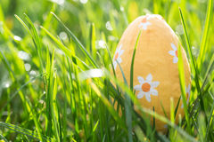 Easter egg nestled in the grass Royalty Free Stock Photography
