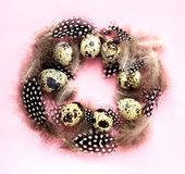Easter egg wreath Festive Easter concept. Nest of quail eggs and feathers on pink background Easter Square top view Copy Space Easter egg wreath royalty free stock photos
