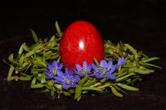 Easter egg and wreath. From willow royalty free stock photos