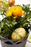 Easter egg and buttercup Royalty Free Stock Image
